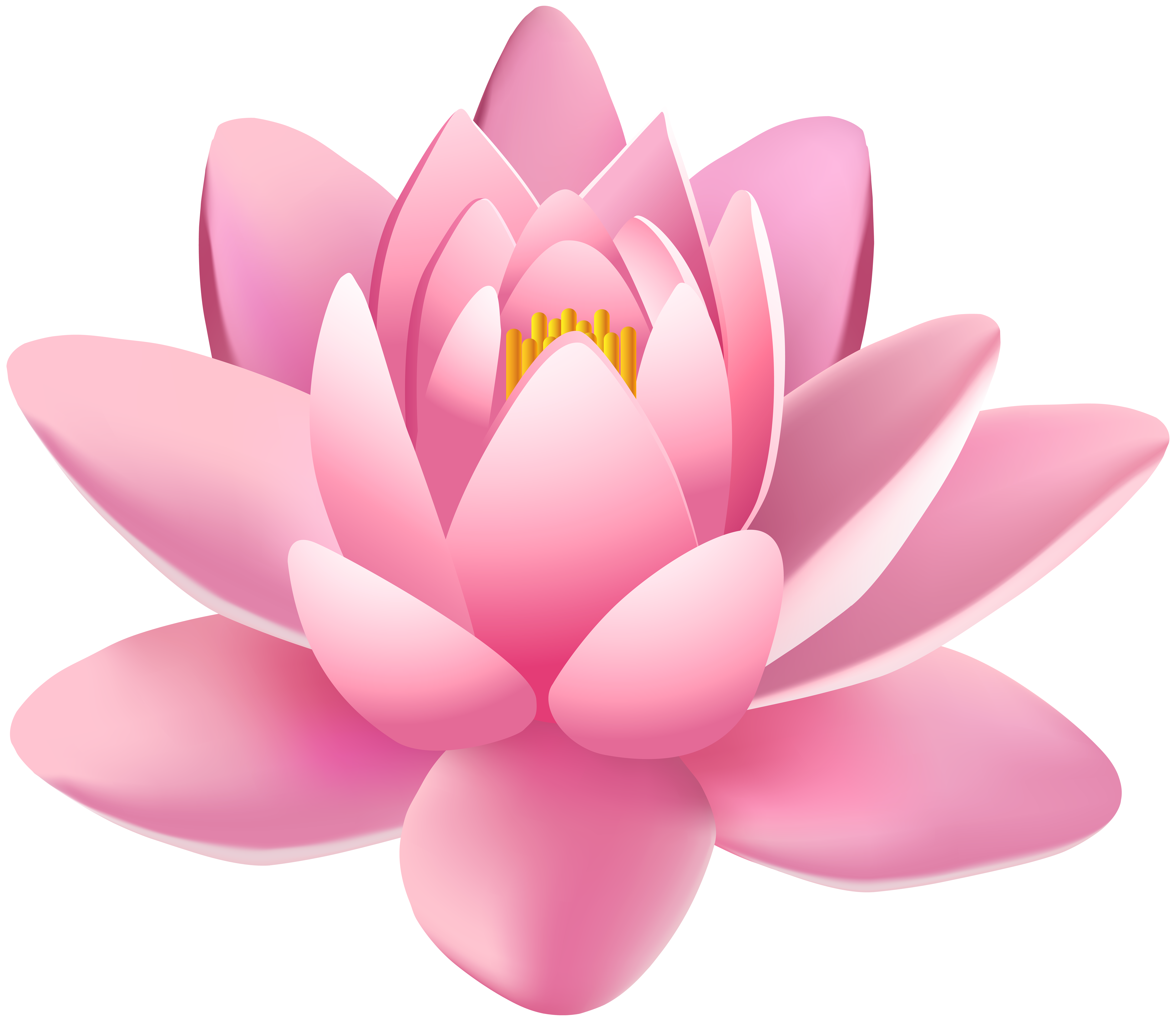 Water lily flower clipart png royalty free stock Pink Lily Flower PNG Clip Art Image | Gallery Yopriceville - High ... png royalty free stock