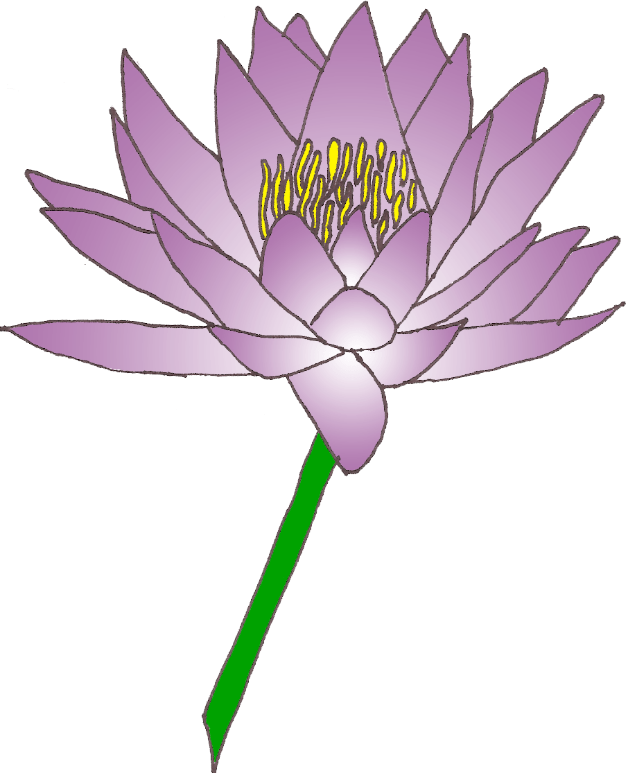 Water lily flower clipart image stock Water lily cliparts png - Clipartix image stock