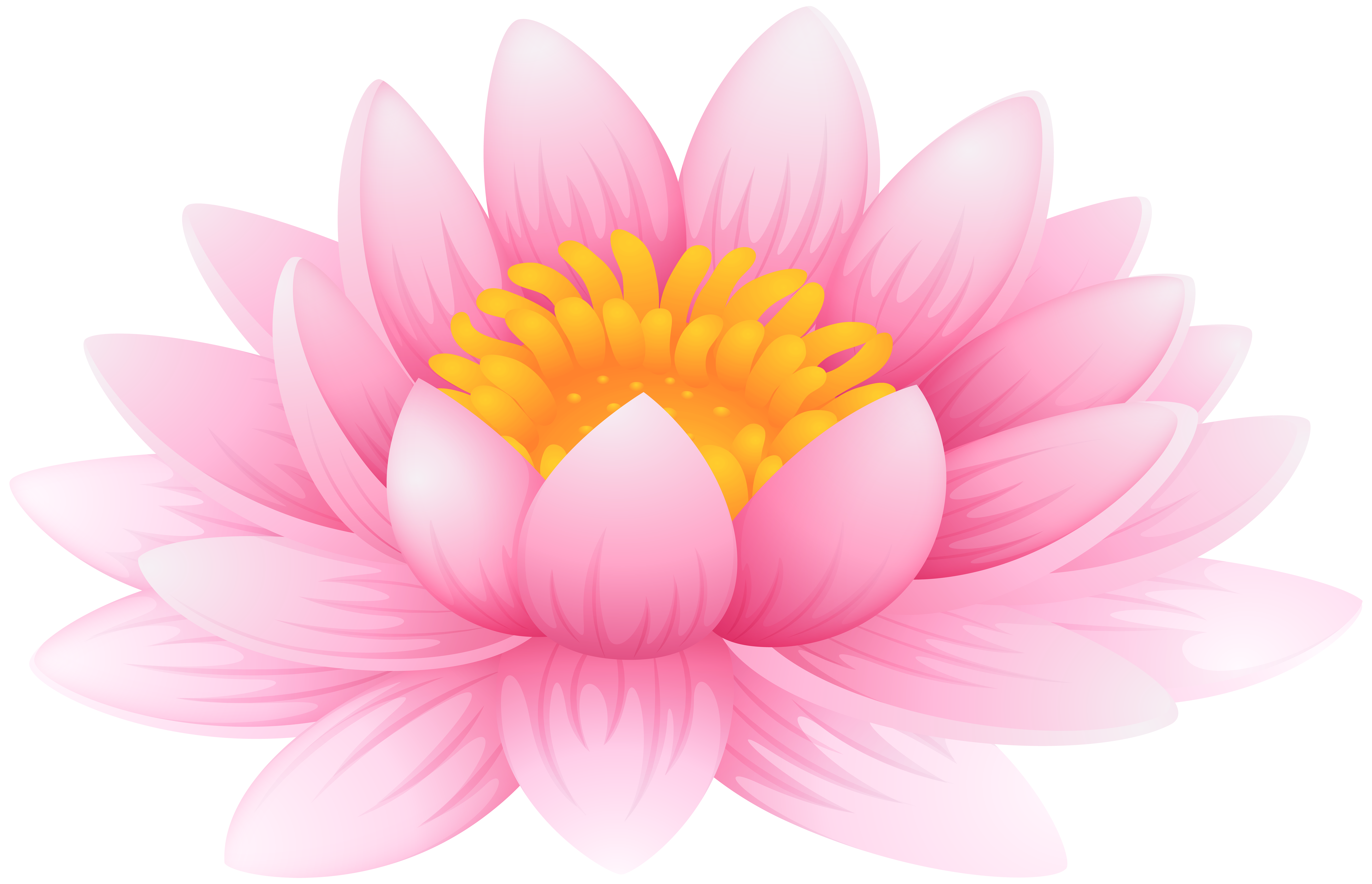 Water lily flower clipart jpg royalty free Water Lily PNG Clip Art Image | Gallery Yopriceville - High-Quality ... jpg royalty free