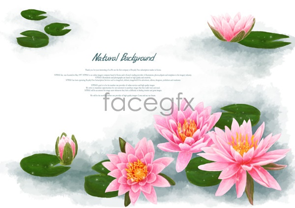 Water lily vector free download graphic freeuse stock Water lily vector free download - ClipartFest graphic freeuse stock