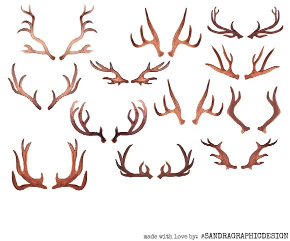 Watercolor antler clipart image library download Antler clipart watercolor, Antler watercolor Transparent ... image library download
