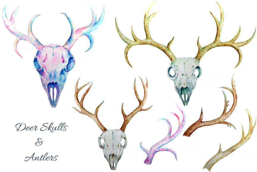 Watercolor antlers clipart graphic royalty free download Deer Skull clip art - watercolor deer skulls and antlers printable instant  download graphic royalty free download