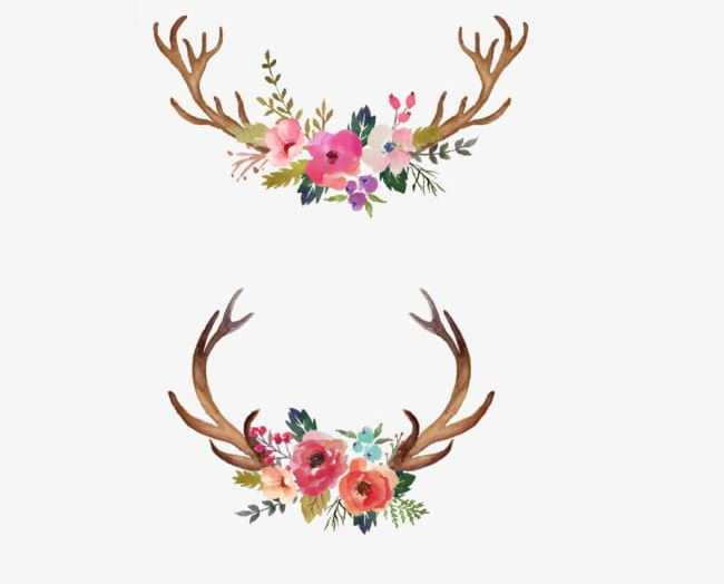 Watercolor antlers clipart freeuse library Hand Painted Watercolor Flower Antler Decorative Pattern PNG ... freeuse library