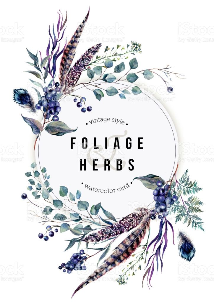 Watercolor boho foliage clipart png download Watercolor Boho Card made of Pheasant and Guinea Feathers ... png download