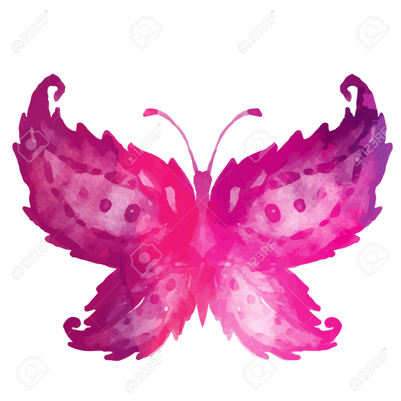 Watercolor butterfly free clipart clip royalty free Amazing Watercolor Butterfly. Vector Art Isolated On White Royalty ... clip royalty free