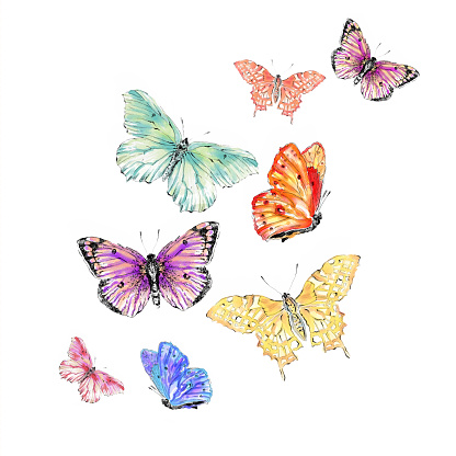 Watercolor butterfly free clipart clipart free library Watercolor butterfly clipart - ClipartFox clipart free library