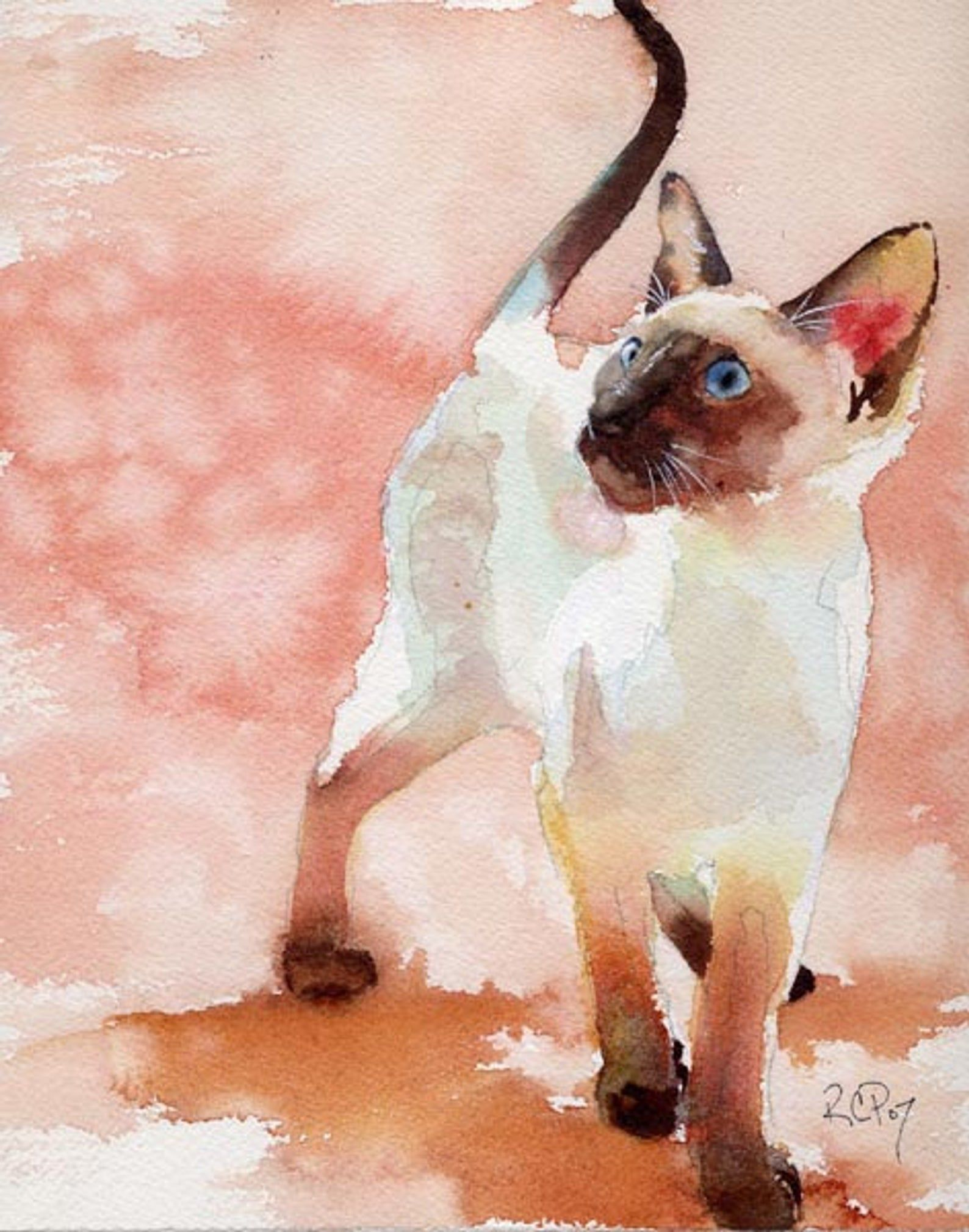 Watercolor chocolate siamese clipart clip freeuse stock Siamese Cat Art Print of my Watercolor Painting Seal Point ... clip freeuse stock
