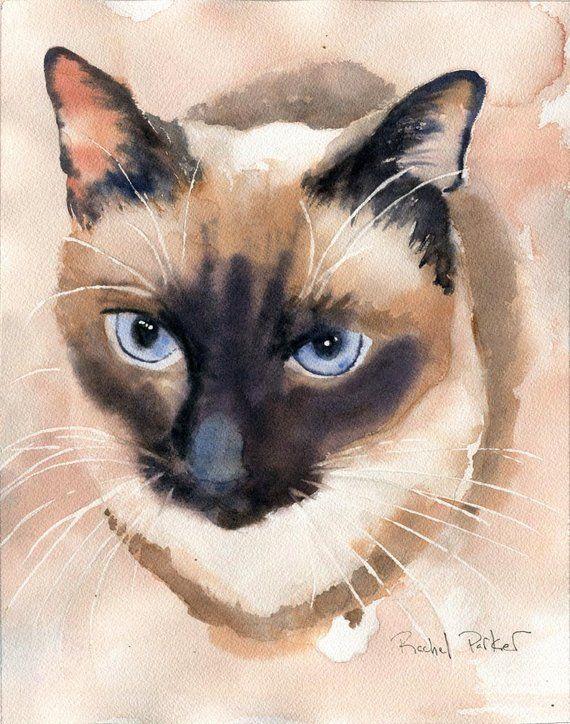 Watercolor chocolate siamese clipart graphic transparent stock Print applehead siamese cat art print of a watercolor ... graphic transparent stock