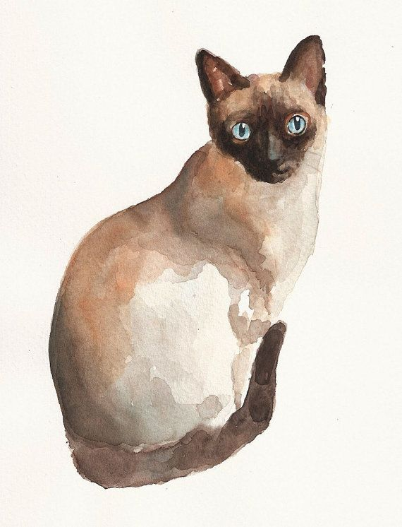 Watercolor chocolate siamese clipart free library Art - Siamese Cat | Things I love | Watercolor cat, Cats ... free library