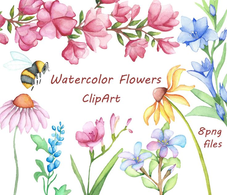 Watercolor clipart freeuse library 45 best ideas about Love watercolor on Pinterest | Flower ... freeuse library