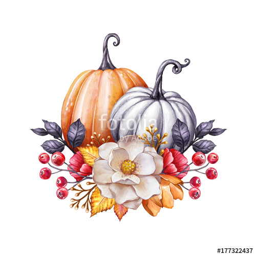 Watercolor clipart free harvest clip art royalty free library floral pumpkins, Thanksgiving watercolor illustration ... clip art royalty free library