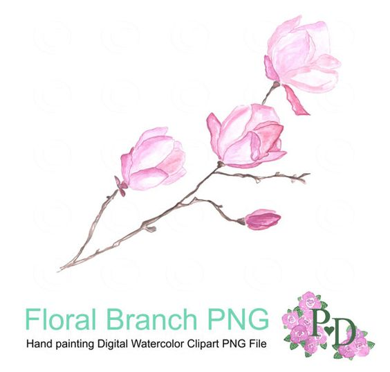 Watercolor clipart png clip art black and white Floral Branch Clipart, Digital Clipart, Pink Magnolia Flower ... clip art black and white