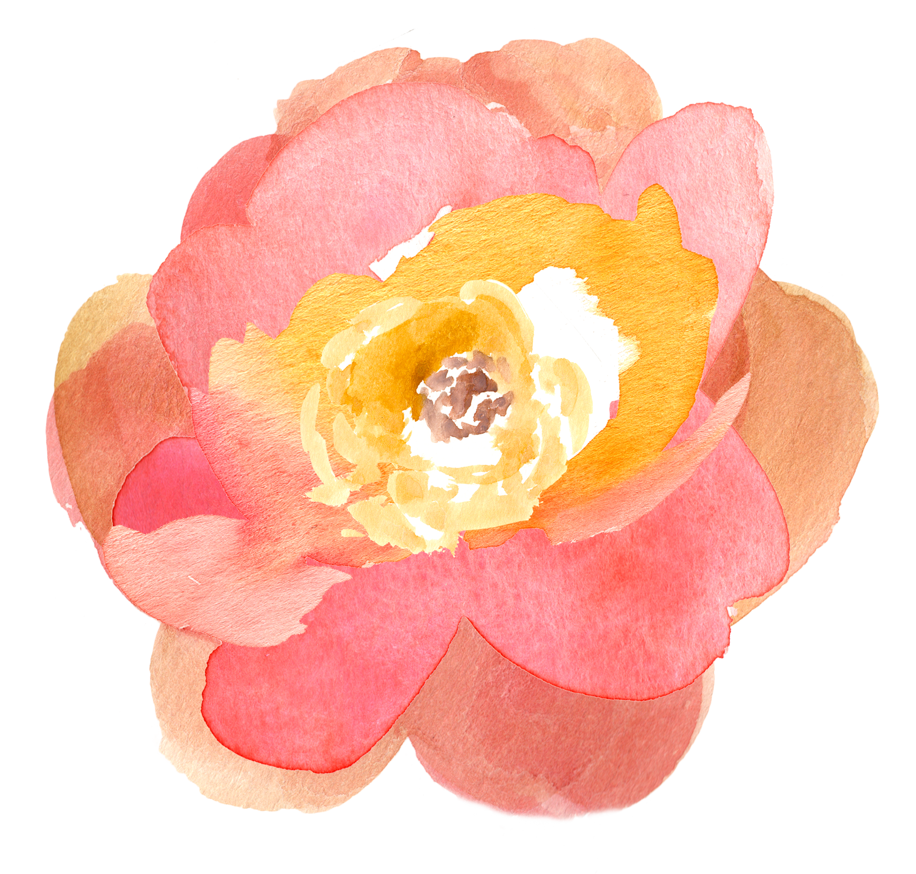 Library Of Peach Watercolor Flower Picture Transparent Stock Png