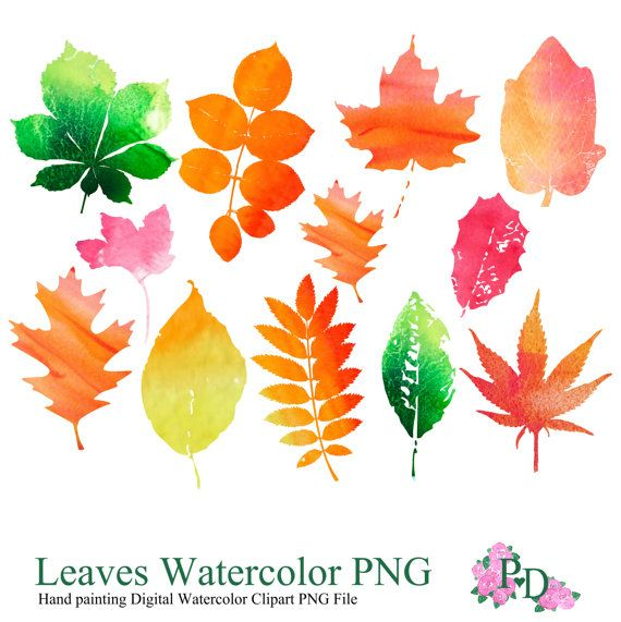 Watercolor clipart png png freeuse library 17 Best images about Watercolor Clip Art - EasyPrintPD on ... png freeuse library
