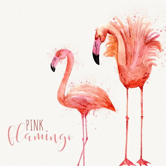 Watercolor flamingo clipart png freeuse stock Flamingo clipart Pink flamingo Watercolor flamingo clipart ... png freeuse stock