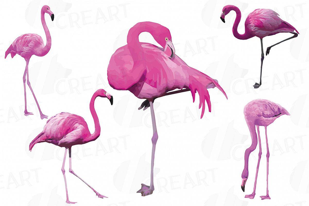 Watercolor flamingo clipart clip art freeuse library Watercolor Flamingos Clipart. Tropical clipart, 5 flamingo clip art freeuse library