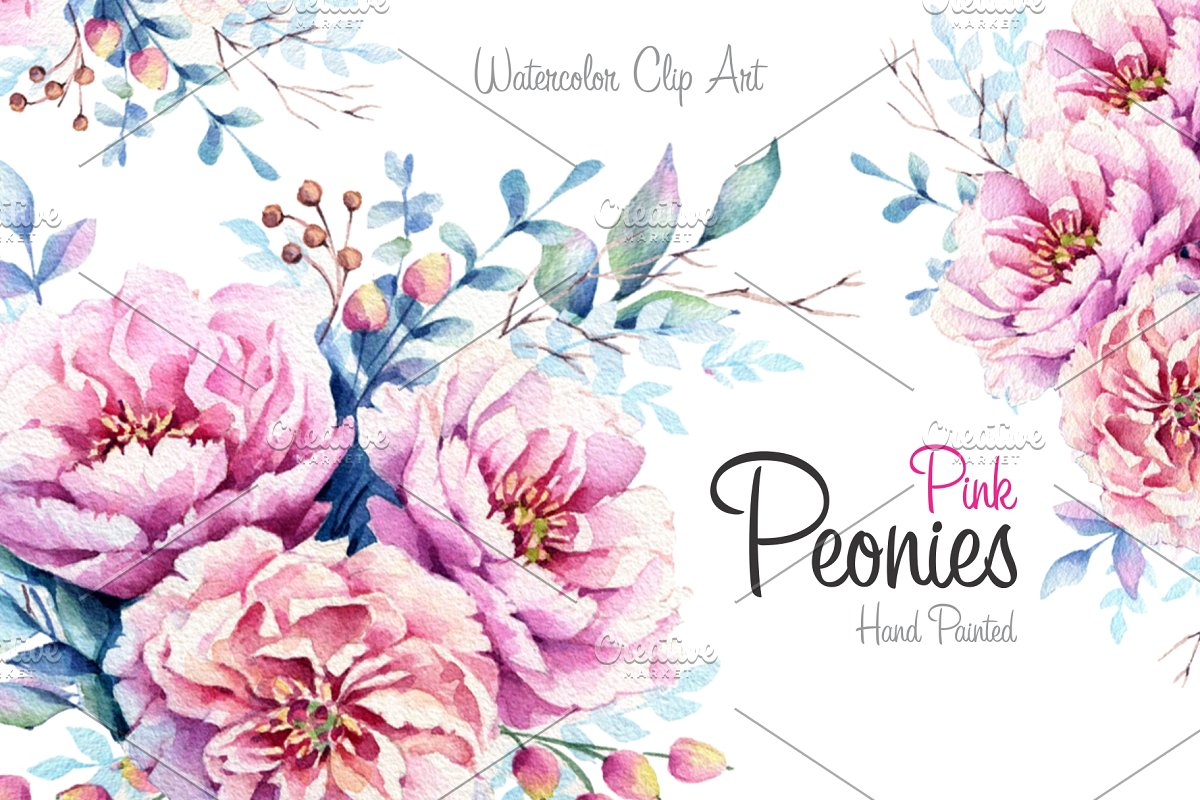 Watercolor floral wedding invitation clipart pink peonies picture download Pink Peonies Watercolor set picture download