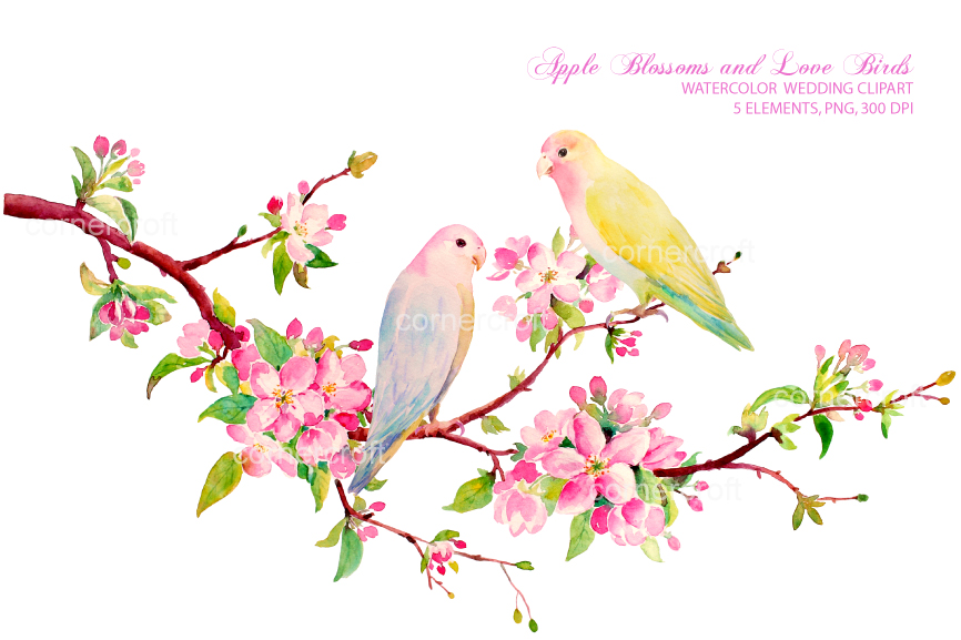 Watercolor flower bird clipart