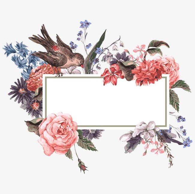 Watercolor flower bird clipart graphic black and white Watercolor Flowers And Border Frame PNG, Clipart, Flower ... graphic black and white