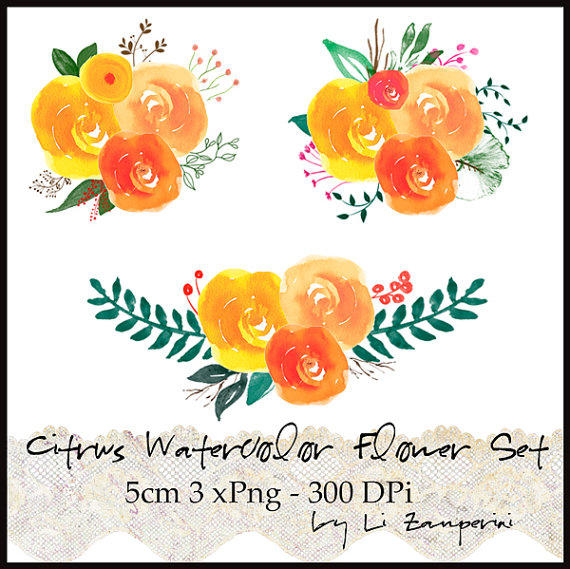 Watercolor flower clipart royalty free stock Shop Watercolor Flowers Clipart on Wanelo royalty free stock