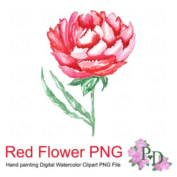 Watercolor flower clipart no background png stock Red Flower Clipart PNG file Digital Watercolor Hand painted no ... png stock