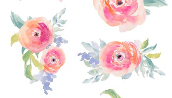 Watercolor flower clipart no background clip art free library Watercolor flower clipart no background - ClipartFest clip art free library