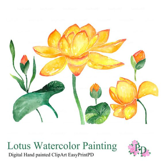 Watercolor flower clipart png picture freeuse Flowers Clipart, Lotus Watercolor Clip Art, Digital Clipart ... picture freeuse