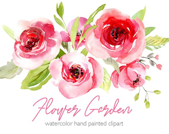 Pink blush clipart royalty free download Watercolor Flowers Clipart Pink Blush Red Light Florals ... royalty free download