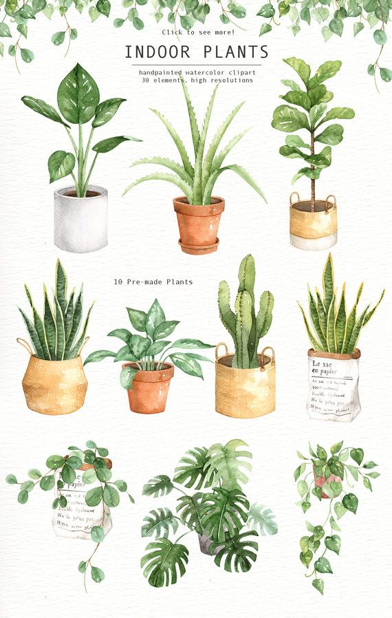 Watercolor flower soil clipart clip freeuse Indoor Plants Watercolor clipart, Watercolour Leaves ... clip freeuse