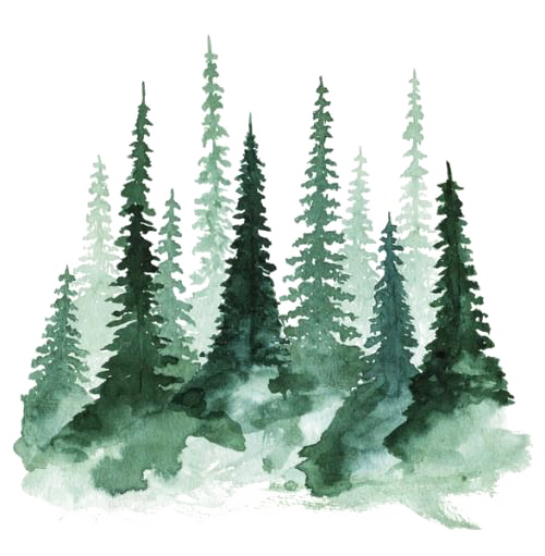 Watercolor forrist free clipart graphic black and white Download Of Study Tree Pine Watercolor Forest Painting ... graphic black and white