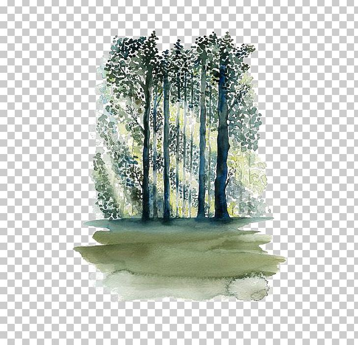 Watercolor forrist free clipart clip royalty free stock Watercolor Painting Paper Tree Forest PNG, Clipart, Art ... clip royalty free stock