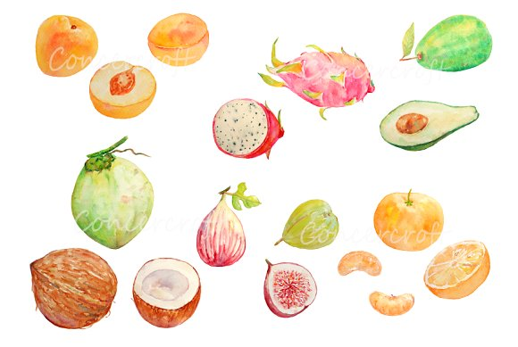 Watercolor fruit clipart jpg royalty free download Watercolor Fruit Clipart Set 4 jpg royalty free download