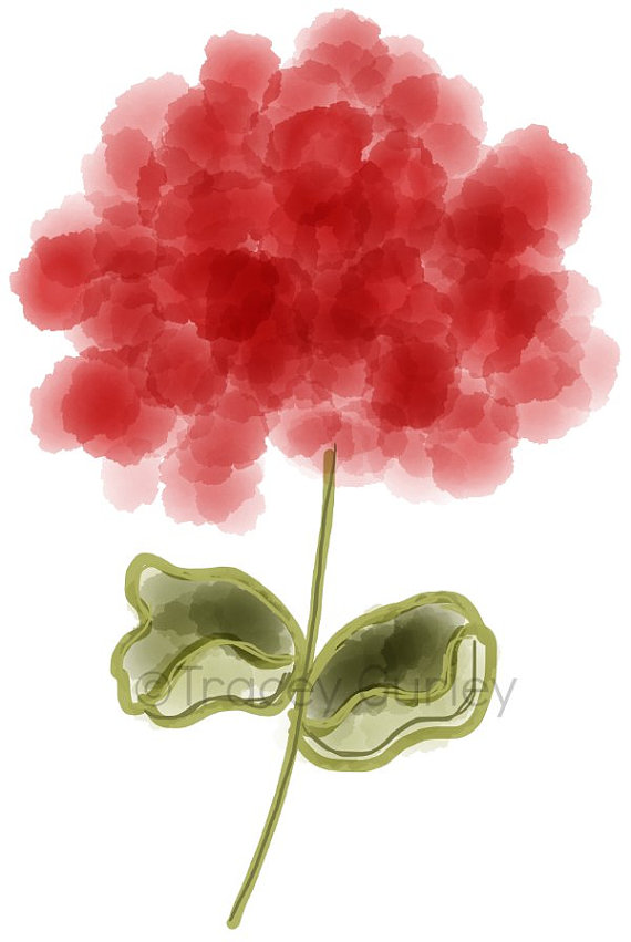 Watercolor geranium clipart banner free library Free Geraniums Cliparts, Download Free Clip Art, Free Clip ... banner free library