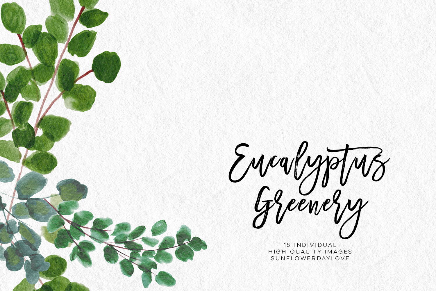Watercolor greenery clipart library Greenery Leaf Watercolor clipart, Eucalyptus clipart, Watercolor greenery  flower, Watercolour botanical Wreath Leaves, Leaf clipart, wedding - Vsual library