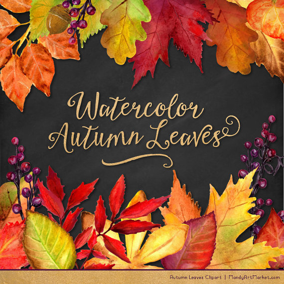 Watercolor leaves fall clipart svg freeuse download Watercolor Autumn Leaves & Branches Clipart - Watercolor ... svg freeuse download