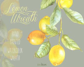 Watercolor lemon wreath free clipart png jpg library Blossom Lemon Wreath Watercolor. Hand painting fruit kitchen jpg library