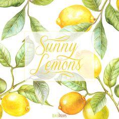 Watercolor lemon wreath free clipart png jpg library stock Lemon Wreath Watercolor. Hand painting fruit art, kitchen, food ... jpg library stock