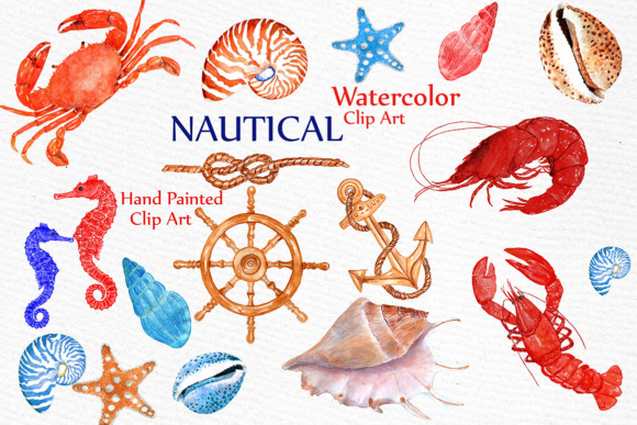 Watercolor nautical clipart free Nautical Watercolor Clipart BEACH ANIMALS CLIPART Watercolor crabs  Crustacean Clip Art Lobster clipart free