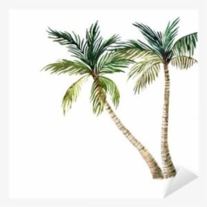 Watercolor palm tree clipart jpg stock Watercolor Tree PNG, Transparent Watercolor Tree PNG Image ... jpg stock