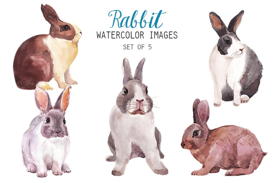 Watercolor rabbit clipart jpg free stock Watercolor Rabbit Clipart jpg free stock