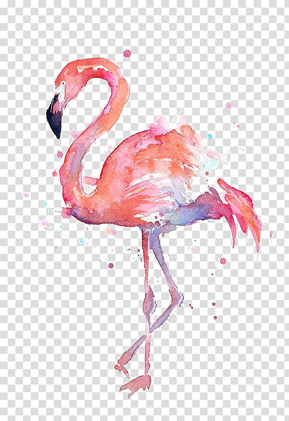 Watercolor shirt clipart clipart black and white download T-shirt Paper Flamingo Watercolor painting Printmaking ... clipart black and white download