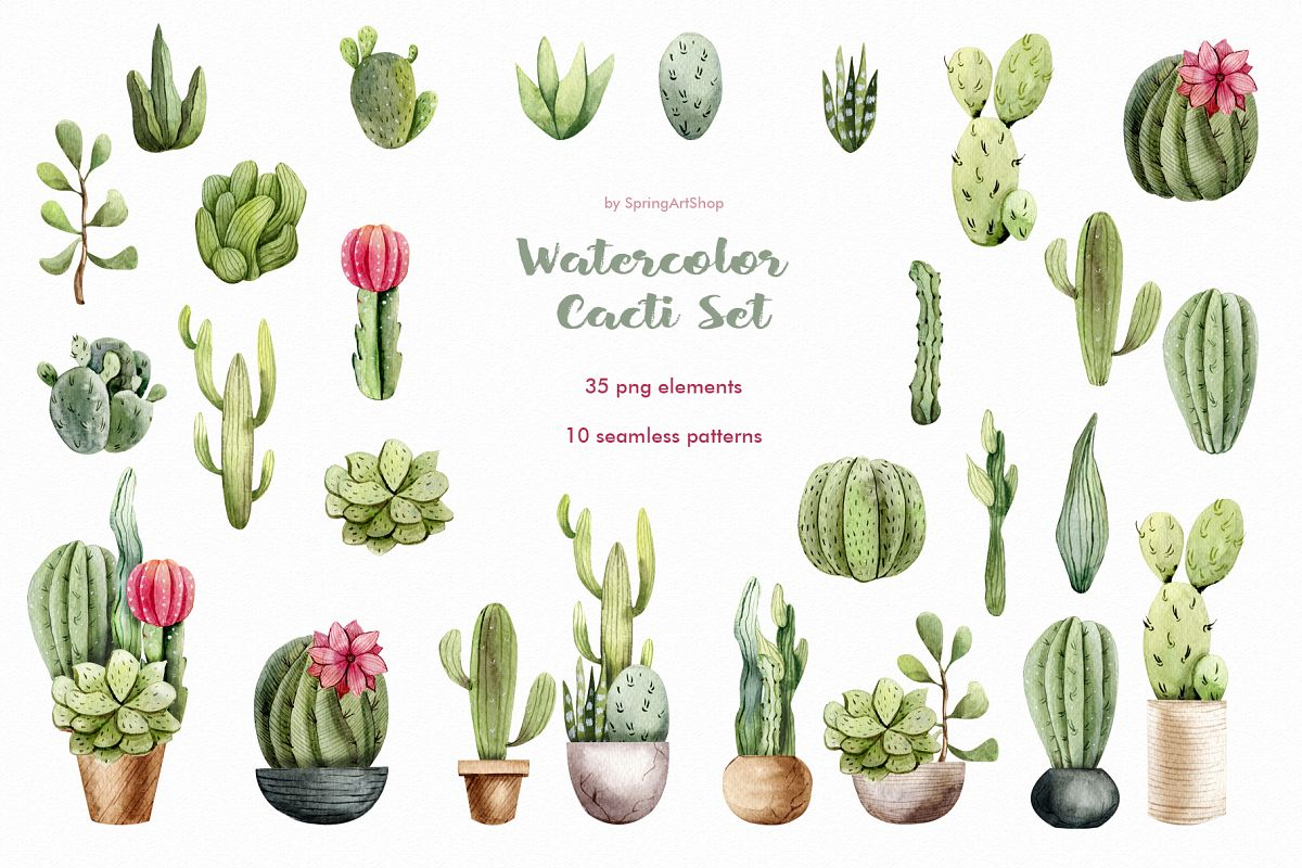 Watercolor succulents clipart clip royalty free stock Watercolor Cacti clipart Plants watercolor succulents clip royalty free stock