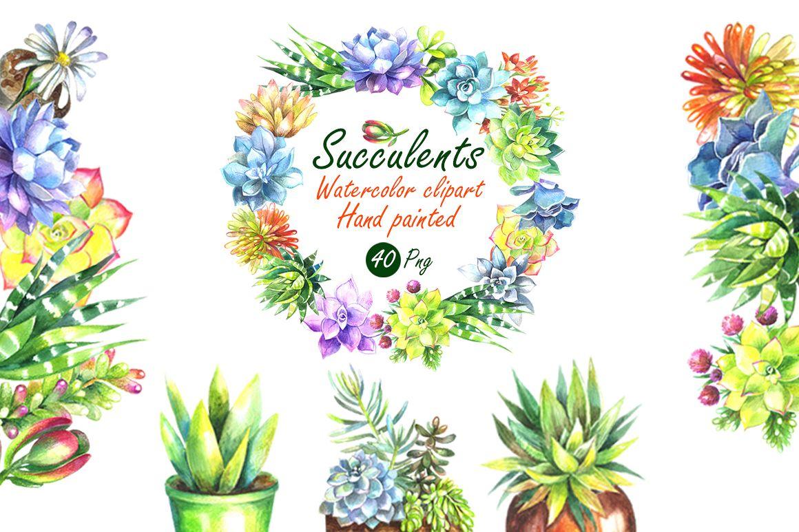 Watercolor succulents clipart clip art library Watercolor Succulents Clip Art Set clip art library