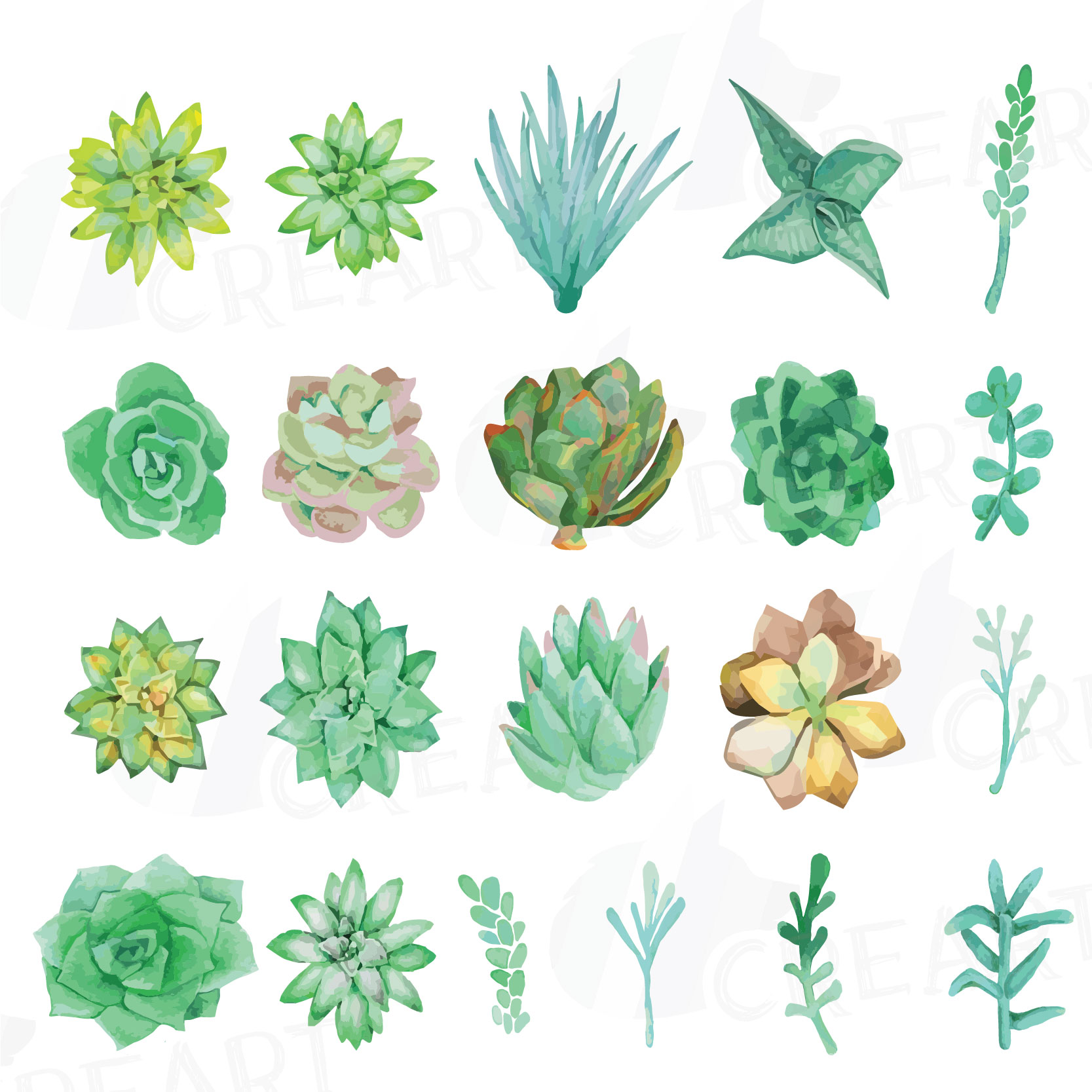 Watercolor succulents clipart png royalty free stock Watercolor succulent Clip art pack, Green succulents collection, Gallery  wall succulent for print u2013 Printable wall art png royalty free stock