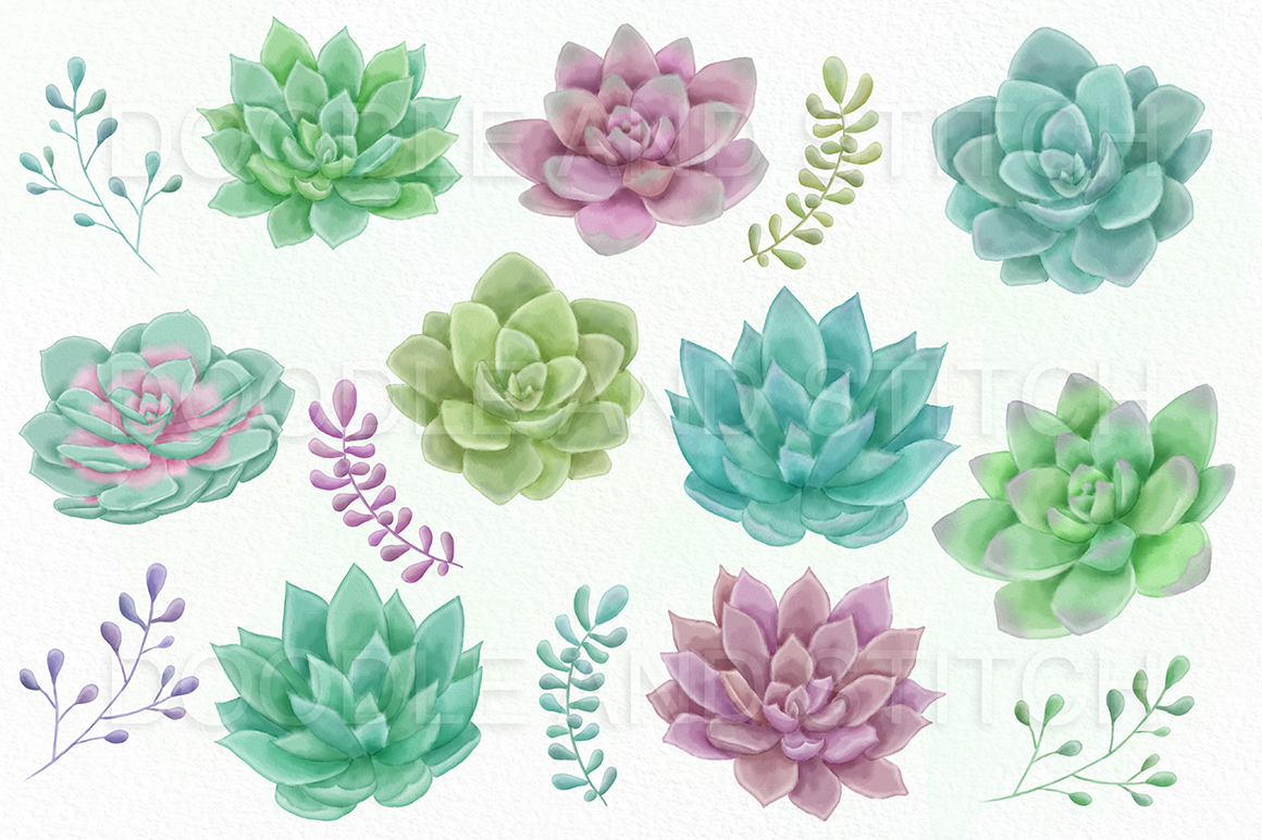 Watercolor succulents clipart png royalty free Watercolor Succulent at PaintingValley.com | Explore ... png royalty free