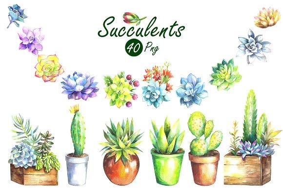 Watercolor succulents clipart clip art freeuse Watercolor Succulents Clip Art Set clip art freeuse