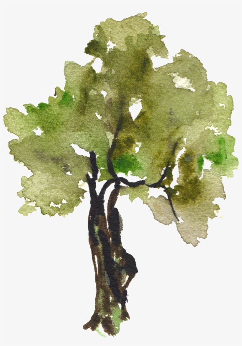 Watercolor trees free clipart graphic freeuse stock Tree Painting Clip Art - Watercolor Trees Png PNG Image ... graphic freeuse stock