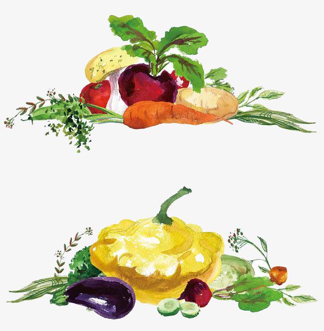 Watercolor veggie clipart jpg transparent Watercolor Vegetables at PaintingValley.com | Explore ... jpg transparent