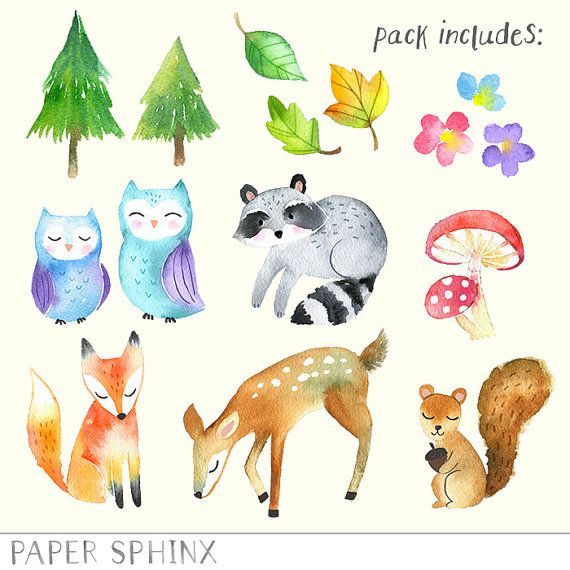 Watercolor woodland animals clipart clipart royalty free library Watercolor Woodland Animals Clipart | Forest Animals Clip ... clipart royalty free library