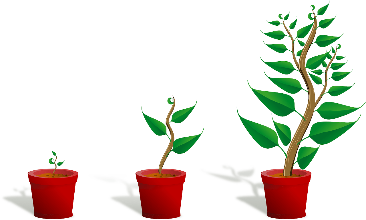 Watering money tree clipart picture library library Nurture Clipart Collection (79+) picture library library